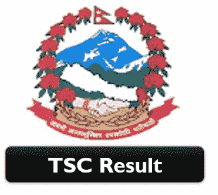 TSC Licence result 2077